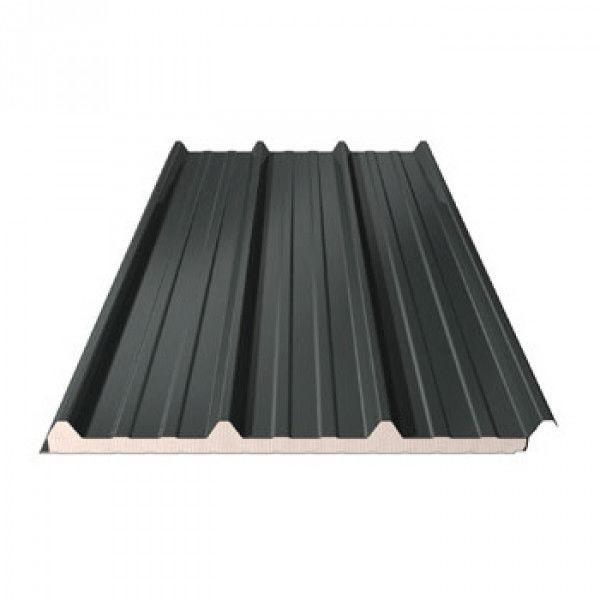 bac acier gris ral 7016 panneau sandwich ep 40 mm. Black Bedroom Furniture Sets. Home Design Ideas